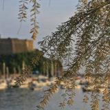 Liguria_01